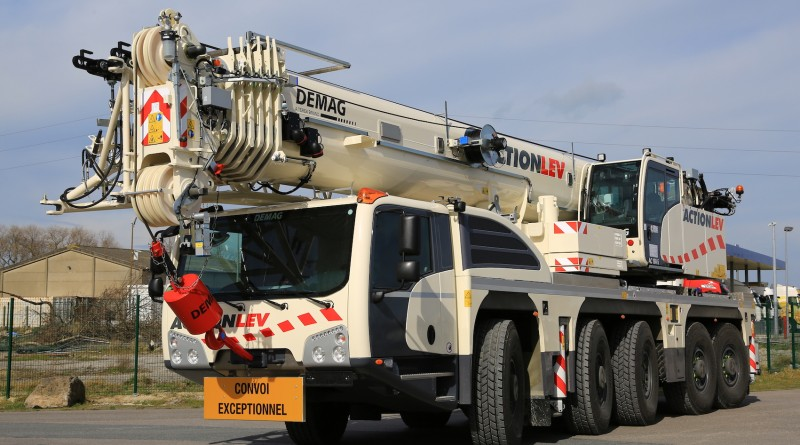 action lev-demag